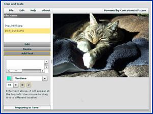 Resize Photos Free Online Photo And Image Resizing Resize